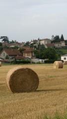Travaux des champs.jpg