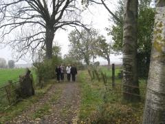 chemin, campagne, bois, rando, marche, automne