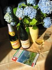 Hortensia - Guide GR223 - cidre et poire.JPG