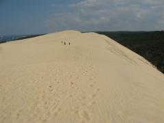 vélo, arcachon, mer, dunes