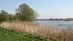 Flandre, Belgique, base, Harelbeke