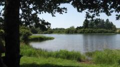Lac de Chassagne - Dordogne.JPG